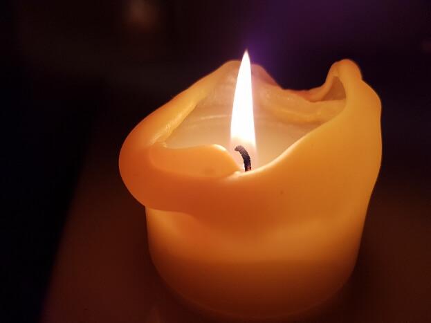 Pet Odor Candles