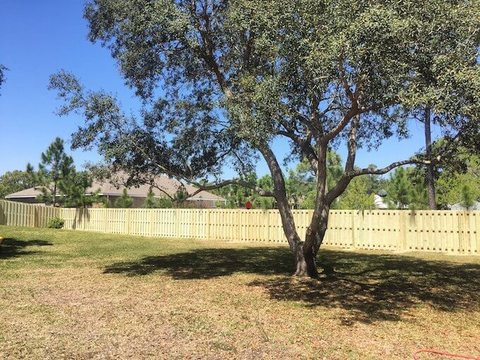 How Much Does A Privacy Fence Cost