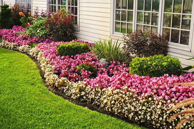 Landscaping Tips in Winter