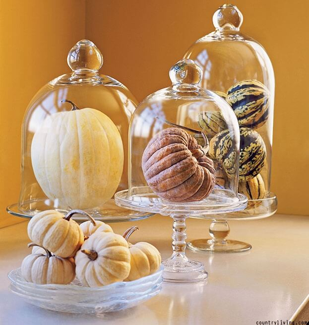 Kitchen Pumpkin Decor