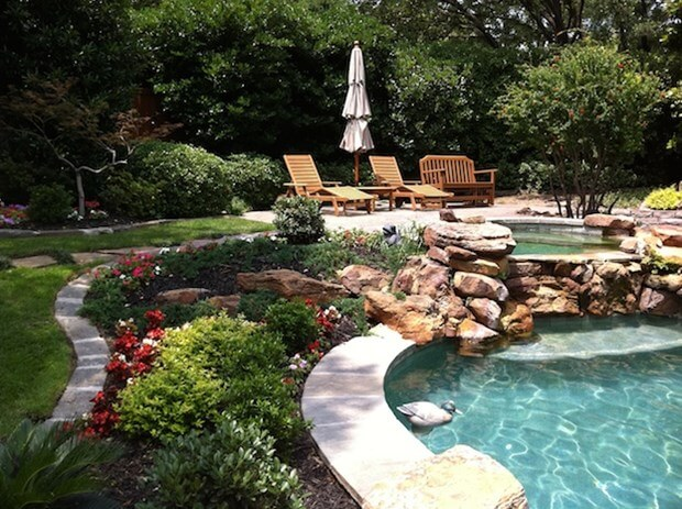 Pool landscaping tips 5 ideas to increase appeal for Flowers around swimming pool