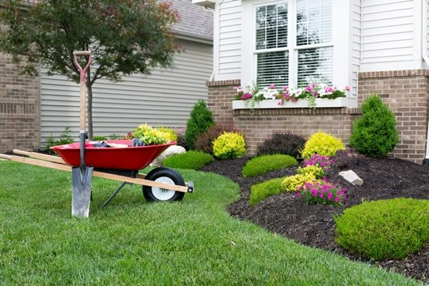 7 Mistakes Every New Homeowner Makes In Their Yard