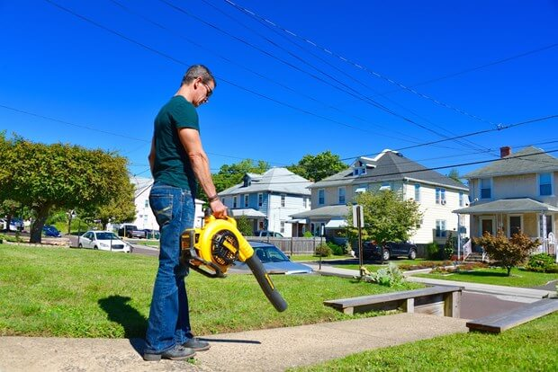 Should You Buy A Cordless Leaf Blower?