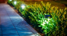Solar Landscape Lighting To Boost Curb Appeal