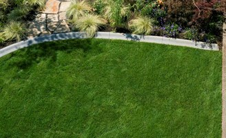 2017 How Much Does Zoysia Sod Cost Average Zoysia Grass