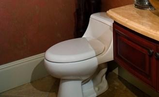 2017 Cost Of Repairing A Toilet Fixing Repairing Toilet Prices