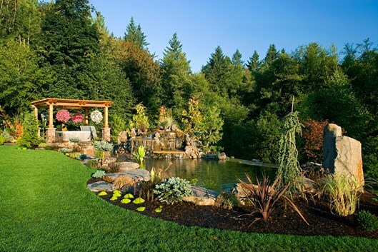 Natural Lawn Care Tips Best Advice For Maintenance