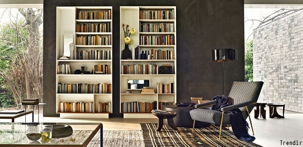 Tall Bookshelfs