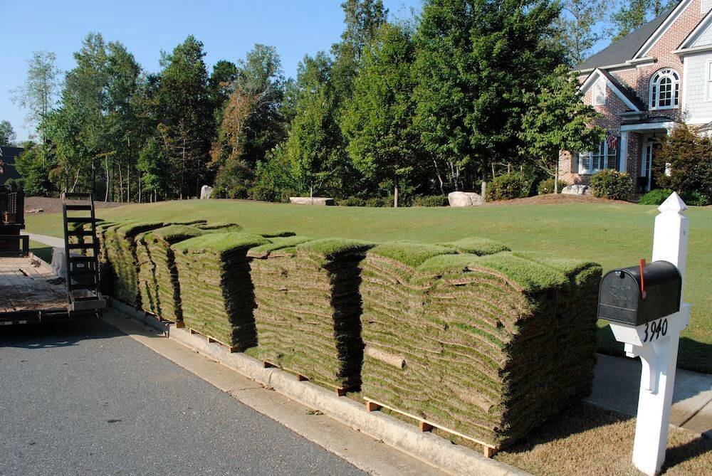 Benefits Of Bermuda Sod