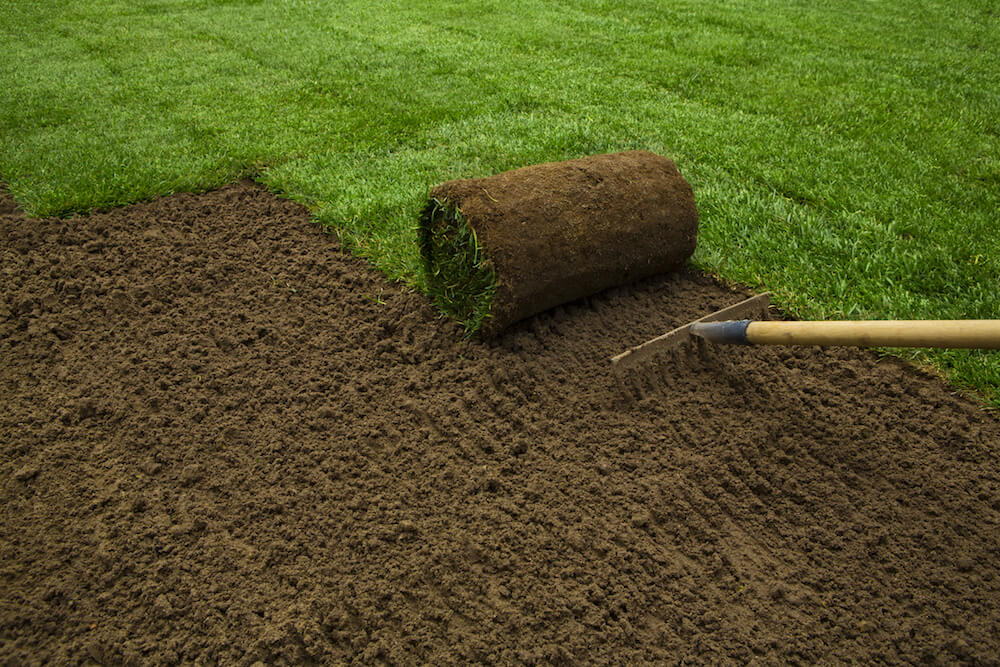Benefits Of Using Bermuda Sod Vs. Lawn Turf