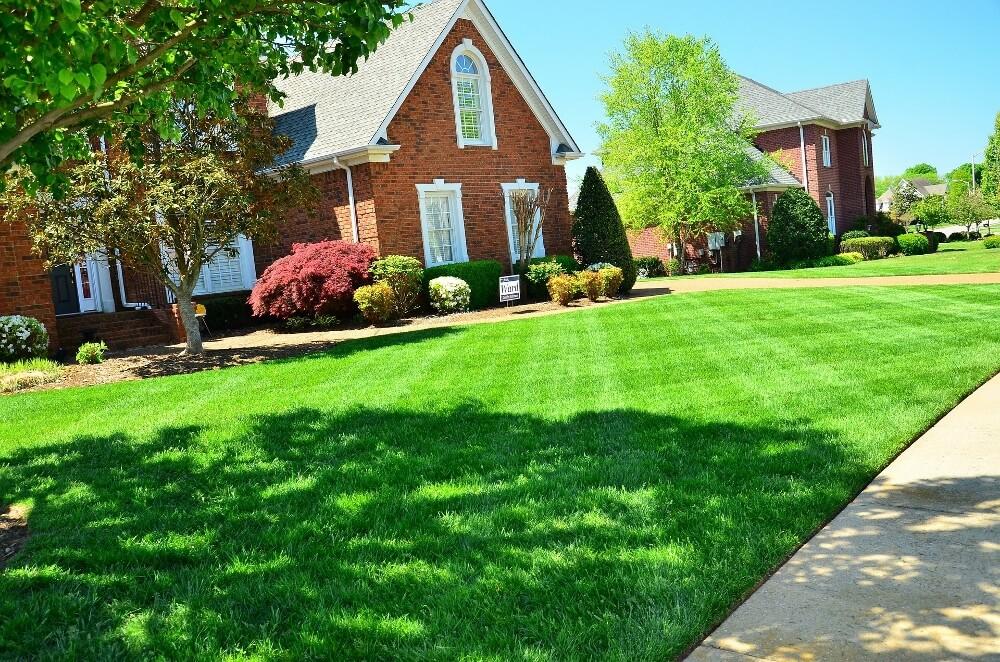 Hire A Lawn Care Service
