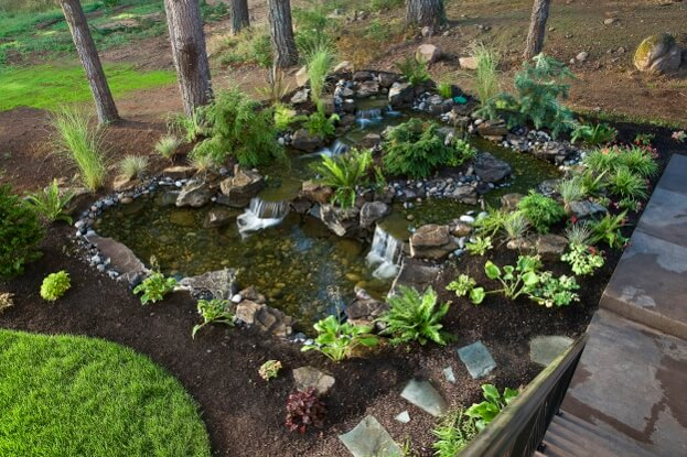 Landscaping For Your Yard