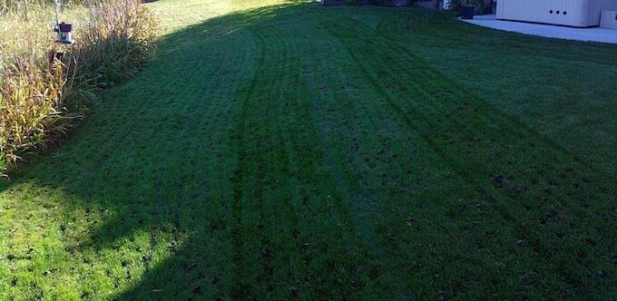 Lawn Aeration