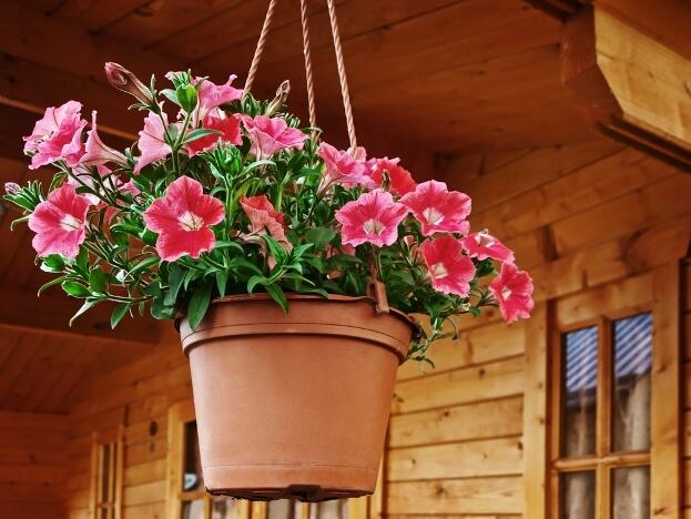 Pink Flower Basket