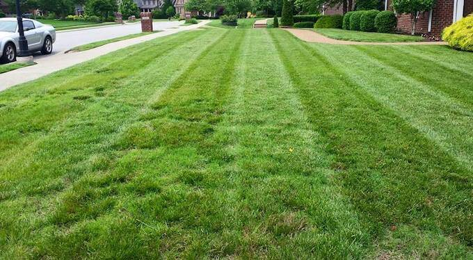 Why Aerate A Lawn